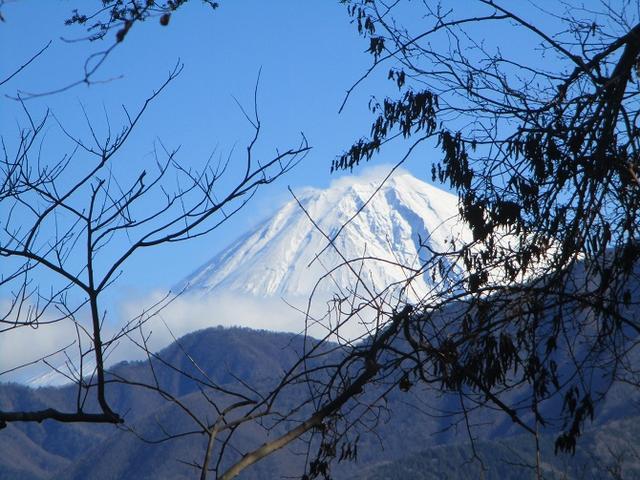 画像10: 先日12月17日に岡田ガイドのコースで山旅会 「身延山」 ツアーにいってまいりました!