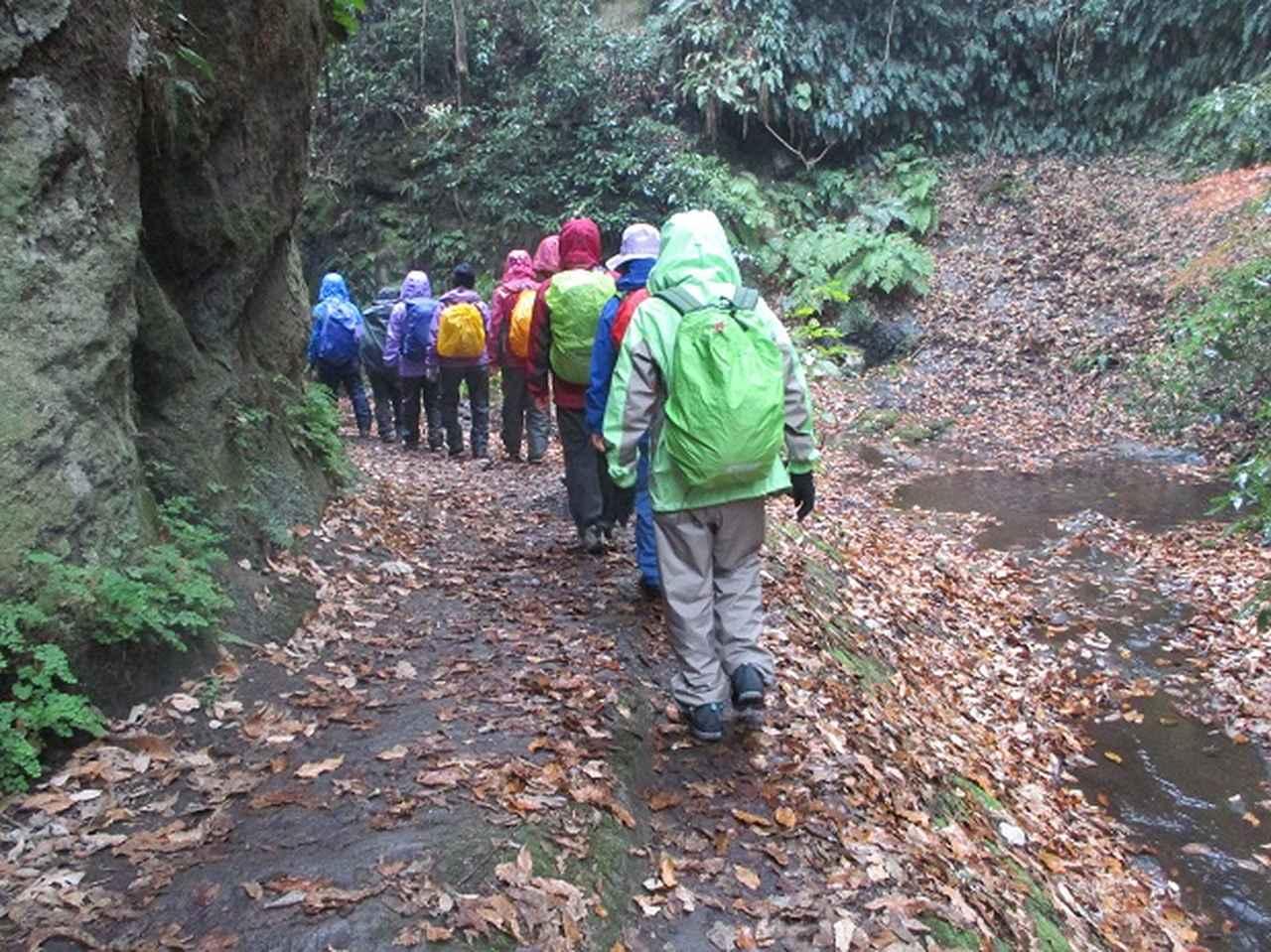 画像11: 先日12月22日に山旅会現地集合 「能見堂緑地から天園」 ツアーにいってまいりました!