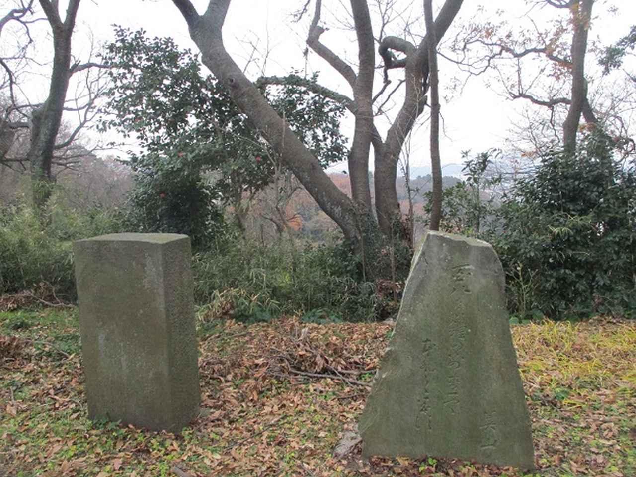 画像1: 先日12月22日に山旅会現地集合 「能見堂緑地から天園」 ツアーにいってまいりました!