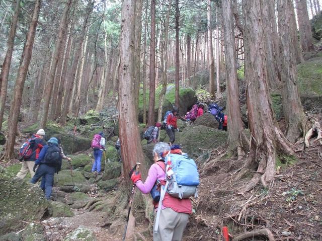 画像2: 【山旅会・登山ガイドこだわりツアー】岡田ガイドからの便り・石老山ツアーにいってまいりました!