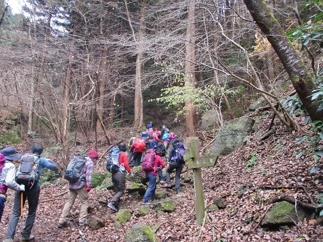画像1: 【山旅会・登山ガイドこだわりツアー】岡田ガイドからの便り・石老山ツアーにいってまいりました!