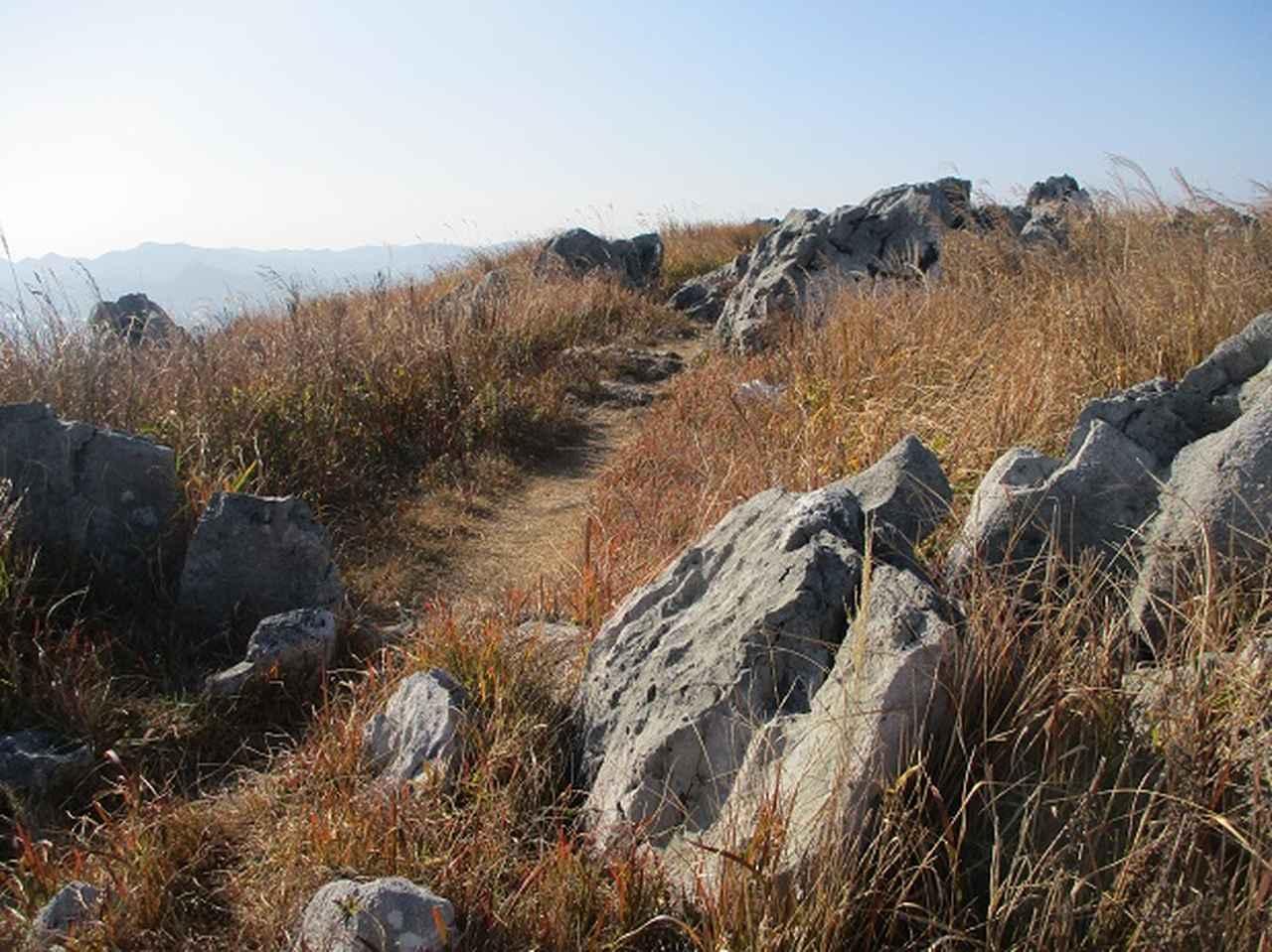 画像5: 本日は ツアー2日目に登る 秋吉台龍護峰 のご報告です