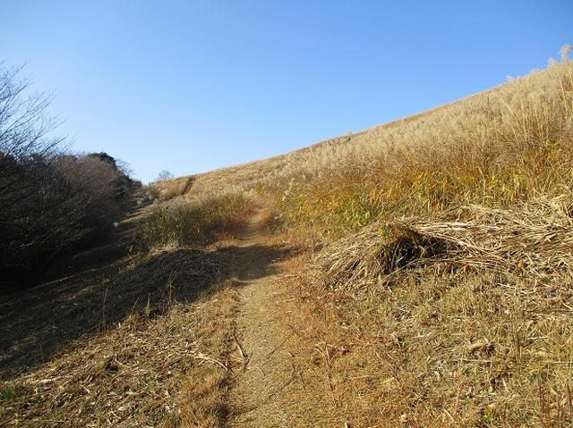 画像3: 本日は ツアー2日目に登る 秋吉台龍護峰 のご報告です