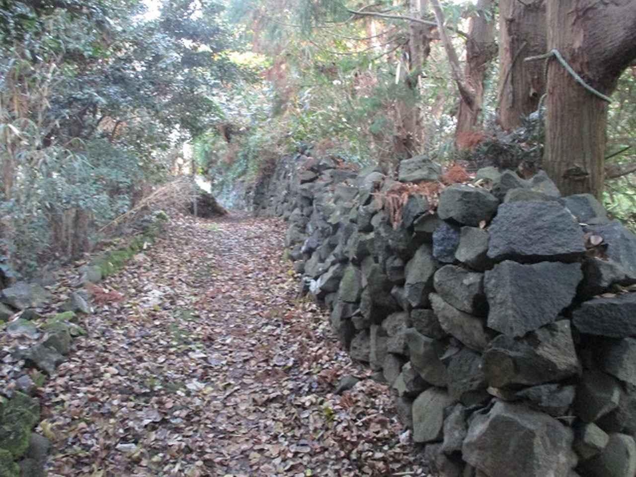 画像5: 1月の山旅会 「宮島弥山・秋吉台龍護峰・萩笠山」 の下見にいってまいりました!