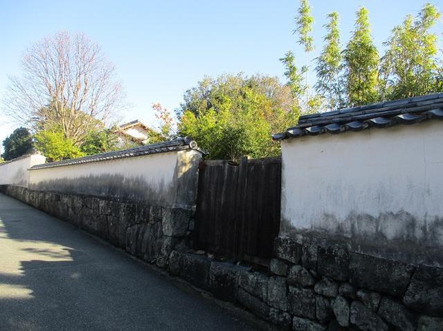 画像10: 1月の山旅会 「宮島弥山・秋吉台龍護峰・萩笠山」 の下見にいってまいりました!