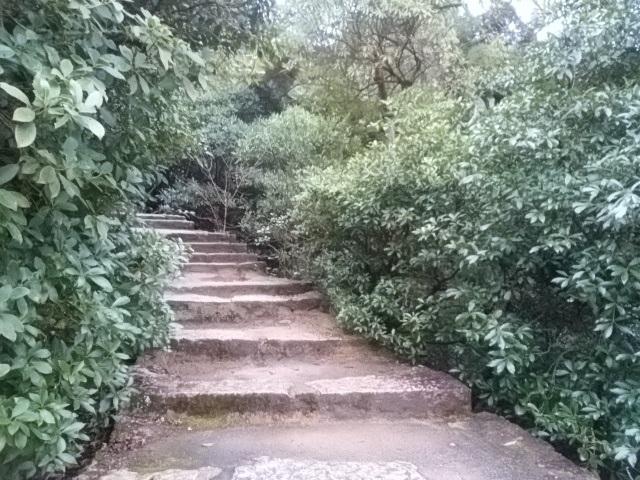 画像4: 1月の山旅会 「宮島弥山・秋吉台龍護峰・萩笠山」 ツアーの下見にいってまいりました!