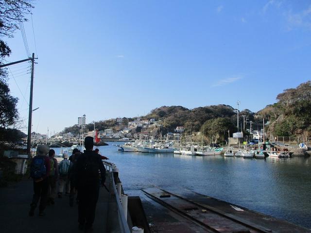 画像1: 12月27日に岡田ガイドのコースで山旅会ハイキング 「須崎遊歩道」 にいってまいりました!