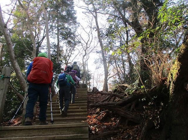 画像3: 先日12月21日に岡田ガイドのコースで 「高尾山」 へ行ってきました!