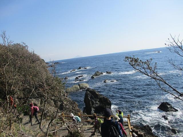 画像3: 12月27日に岡田ガイドのコースで山旅会ハイキング 「須崎遊歩道」 にいってまいりました!