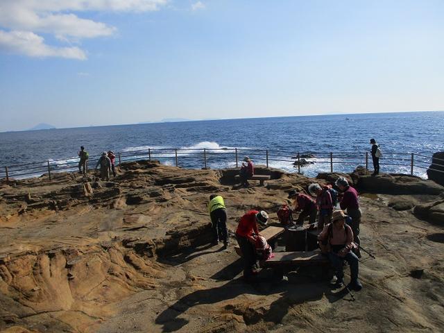 画像4: 12月27日に岡田ガイドのコースで山旅会ハイキング 「須崎遊歩道」 にいってまいりました!