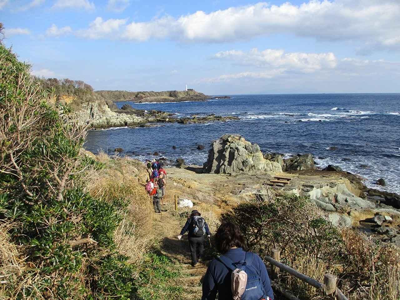 画像5: 12月27日に岡田ガイドのコースで山旅会ハイキング 「須崎遊歩道」 にいってまいりました!
