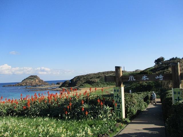 画像10: 12月27日に岡田ガイドのコースで山旅会ハイキング 「須崎遊歩道」 にいってまいりました!