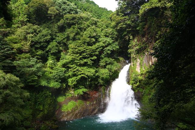 画像: 【河津七滝・ループ橋プラン】