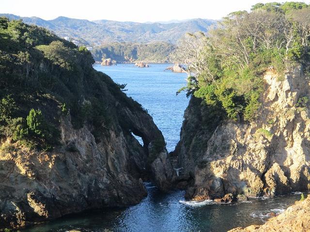 画像14: 12月27日に岡田ガイドのコースで山旅会ハイキング 「須崎遊歩道」 にいってまいりました!