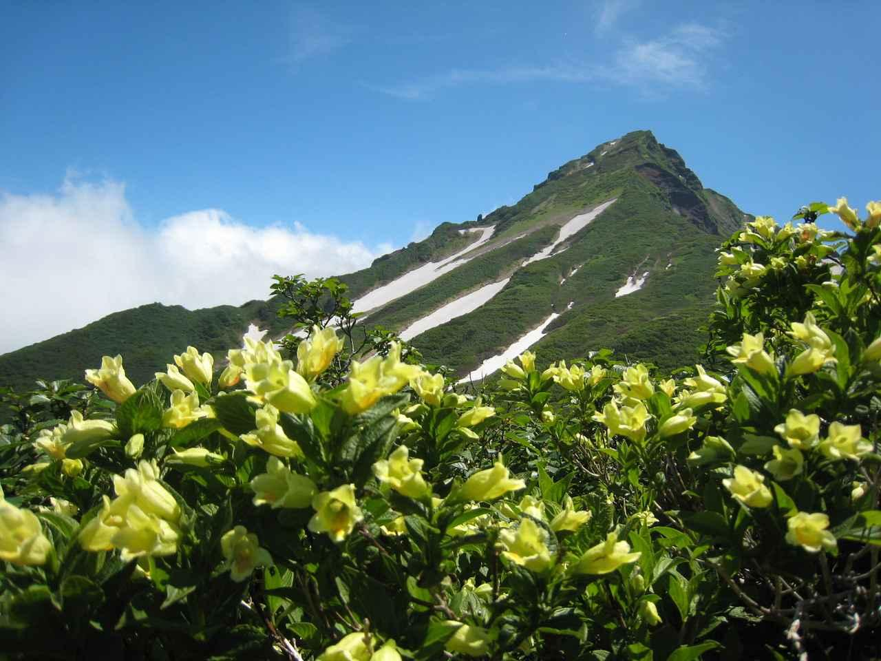 画像: 最北の日本百名山・利尻山
