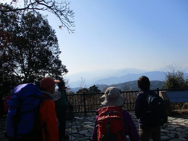 画像5: 先日12月21日に岡田ガイドのコースで 「高尾山」 へ行ってきました!