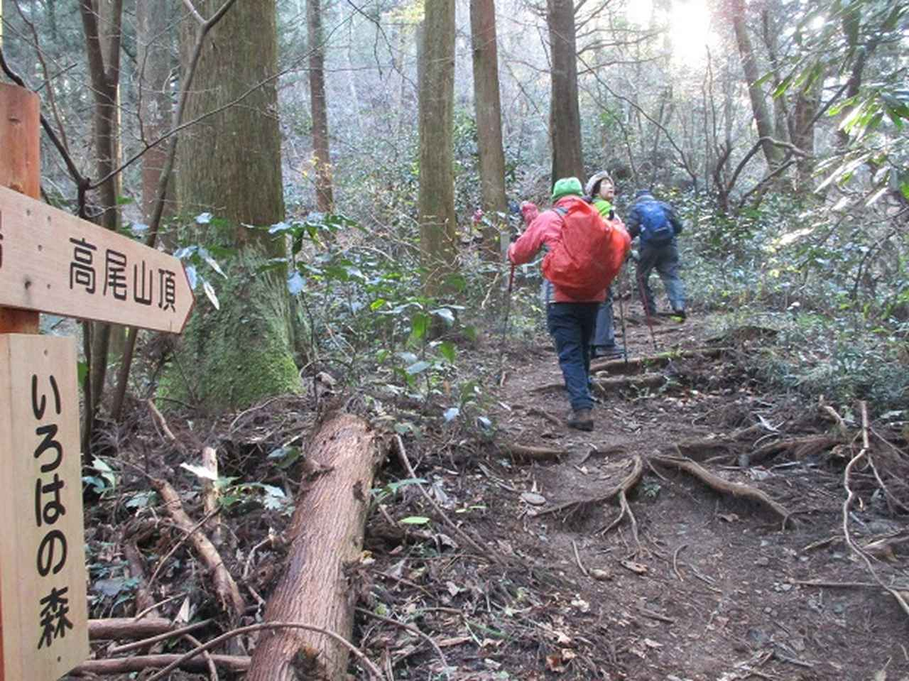画像1: 先日12月21日に岡田ガイドのコースで 「高尾山」 へ行ってきました!