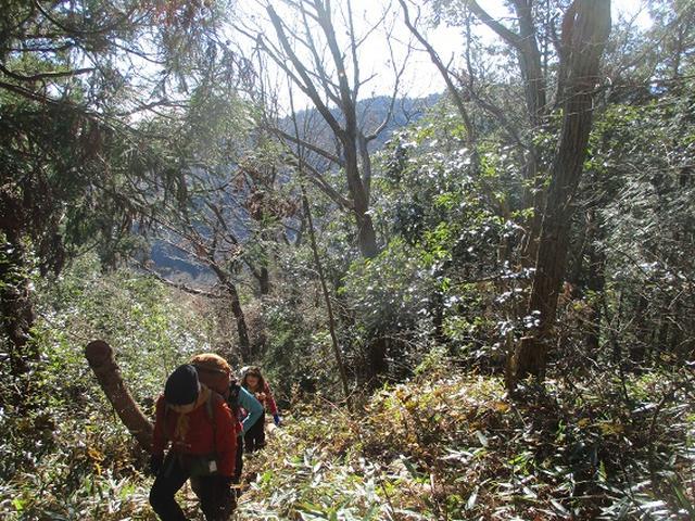 画像2: 年末年始に 山旅会現地集合 「駒木野から八王子城址」 ツアーにいってまいりました!