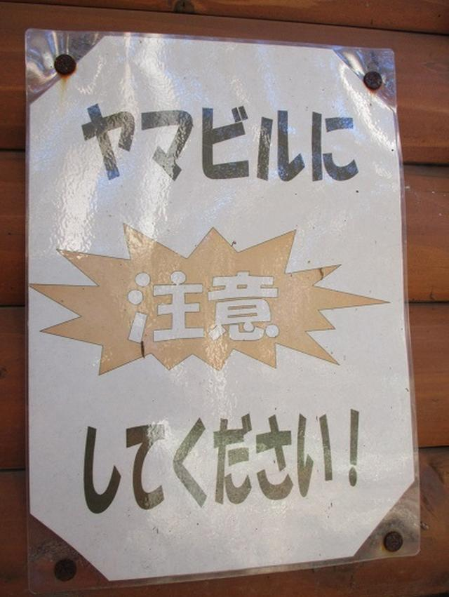 画像4: 1月の山旅会 「丹沢南山」 の下見にいってまいりました!