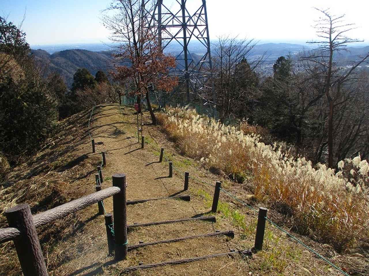 画像9: 1月の山旅会 「丹沢南山」 の下見にいってまいりました!