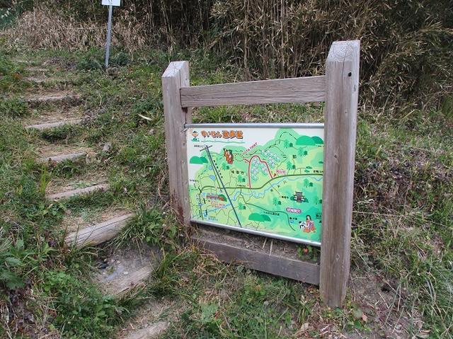 画像3: 1月の山旅会ハイキング 「とみやま水仙遊歩道と濃溝の滝」 の下見のご報告です!