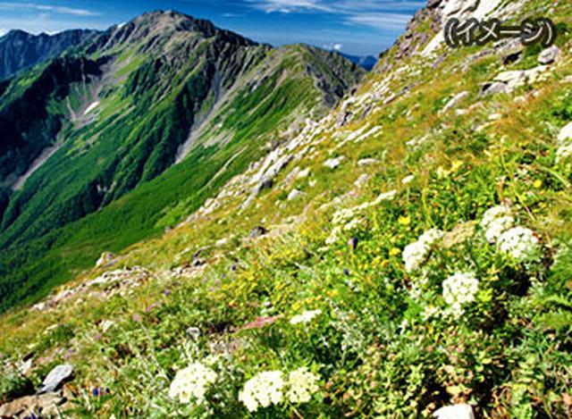 画像: 週末・連休ハイキング・登山ツアー特集