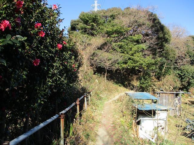 画像8: 1月の山旅会現地集合 「鷹取山から浜見台」 ツアーの下見にいってまいりました!
