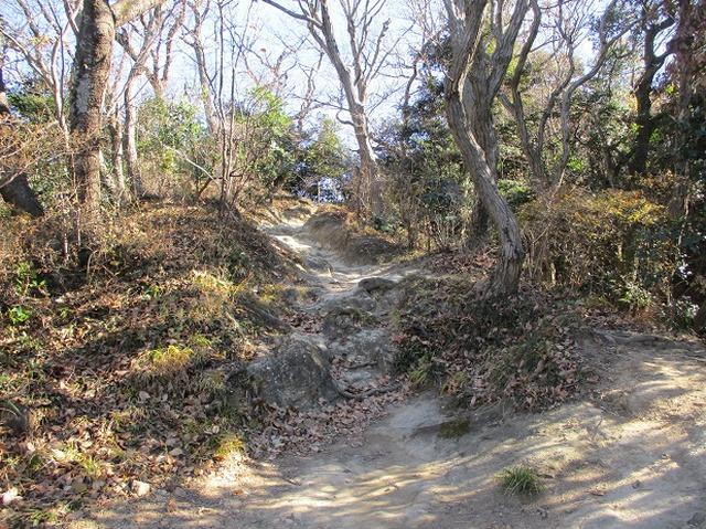 画像4: 1月の山旅会現地集合 「鷹取山から浜見台」 ツアーの下見にいってまいりました!