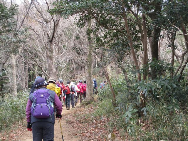 画像6: 先日1月10日に山旅会 「宝篋(ほうきょう)山」 ツアーにいってまいりました!