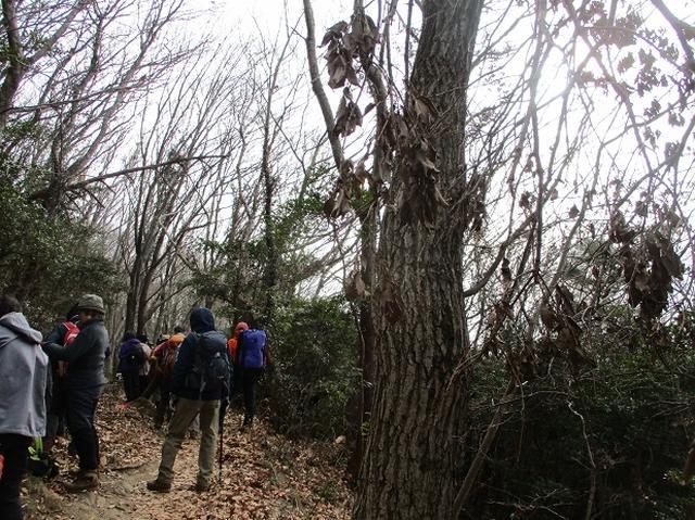 画像2: 先日1月10日に山旅会 「宝篋(ほうきょう)山」 ツアーにいってまいりました!