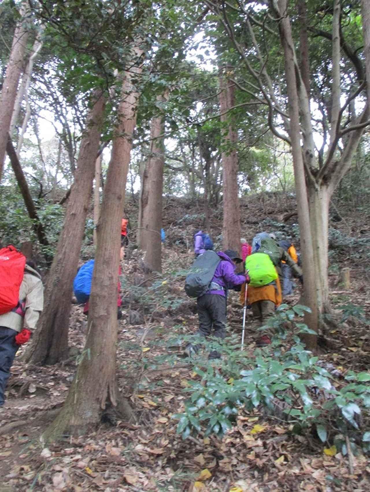 画像6: 1月12日に山旅会現地集合ツアー 「六浦から朝比奈切通・大平山」 ツアーにいってまいりました!