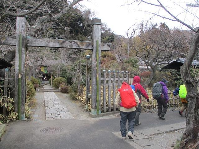 画像5: 1月12日に山旅会現地集合ツアー 「六浦から朝比奈切通・大平山」 ツアーにいってまいりました!
