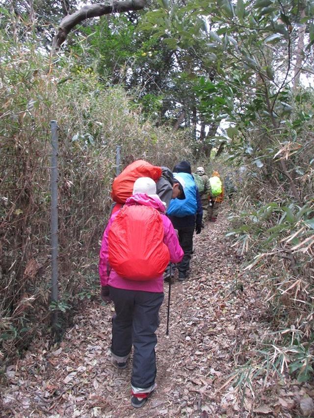 画像1: 1月12日に山旅会現地集合ツアー 「六浦から朝比奈切通・大平山」 ツアーにいってまいりました!