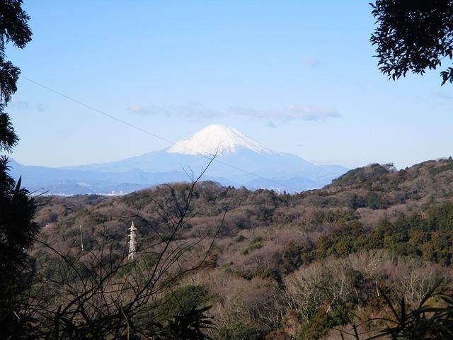 画像8: 1月12日に山旅会現地集合ツアー 「六浦から朝比奈切通・大平山」 ツアーにいってまいりました!