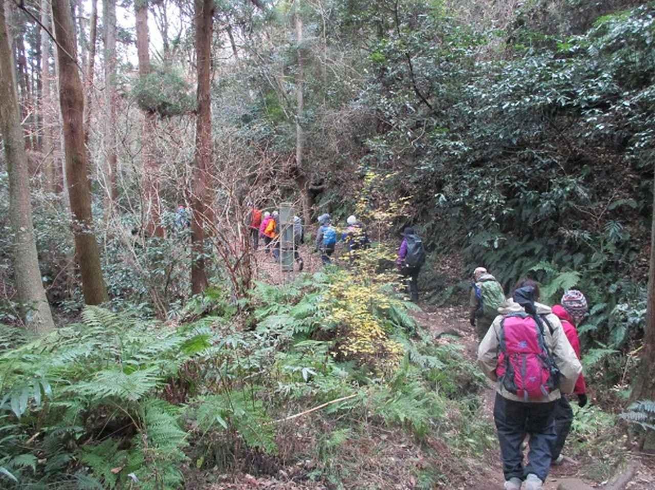 画像11: 1月12日に山旅会現地集合ツアー 「六浦から朝比奈切通・大平山」 ツアーにいってまいりました!