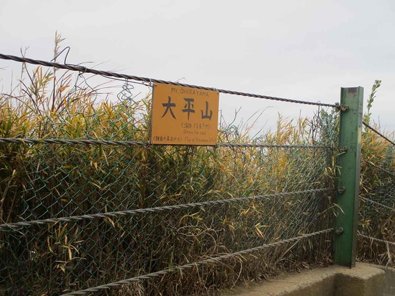 画像10: 1月12日に山旅会現地集合ツアー 「六浦から朝比奈切通・大平山」 ツアーにいってまいりました!