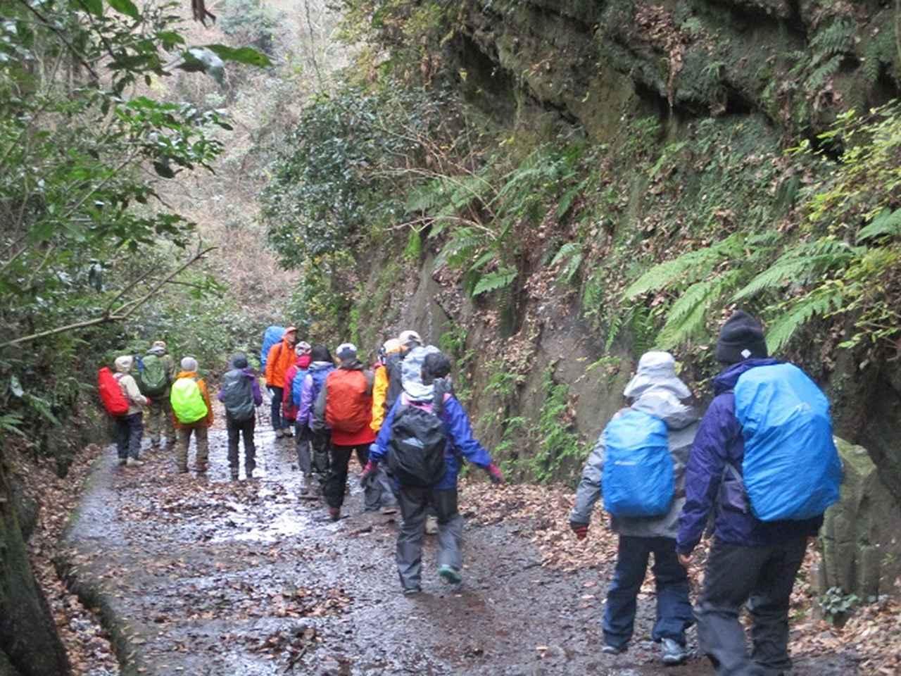 画像3: 1月12日に山旅会現地集合ツアー 「六浦から朝比奈切通・大平山」 ツアーにいってまいりました!