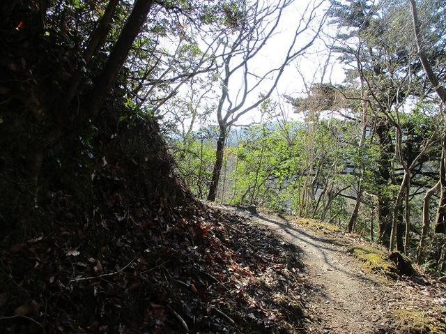 画像4: 1月の山旅会 「高宕山」 の下見にいってまいりました!