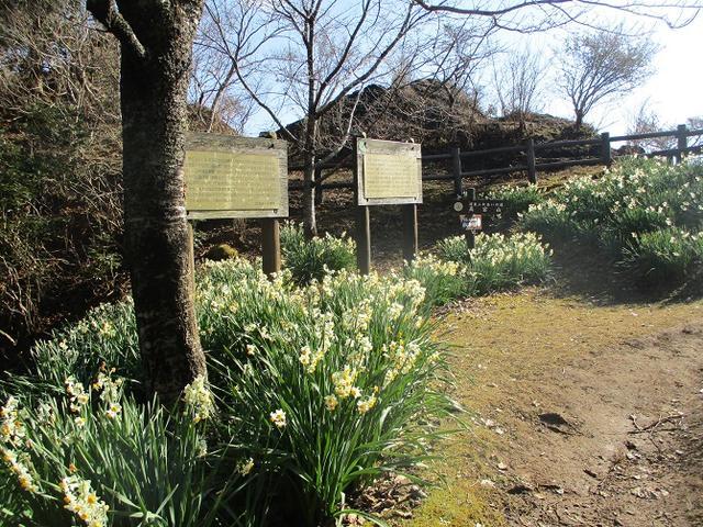 画像2: 1月の山旅会 「高宕山」 の下見にいってまいりました!