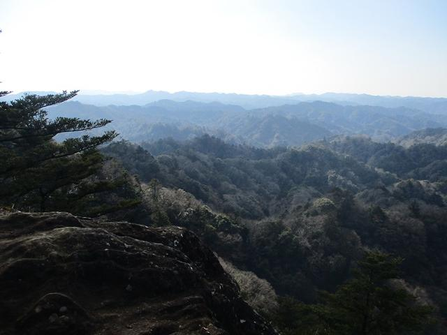 画像7: 1月の山旅会 「高宕山」 の下見にいってまいりました!