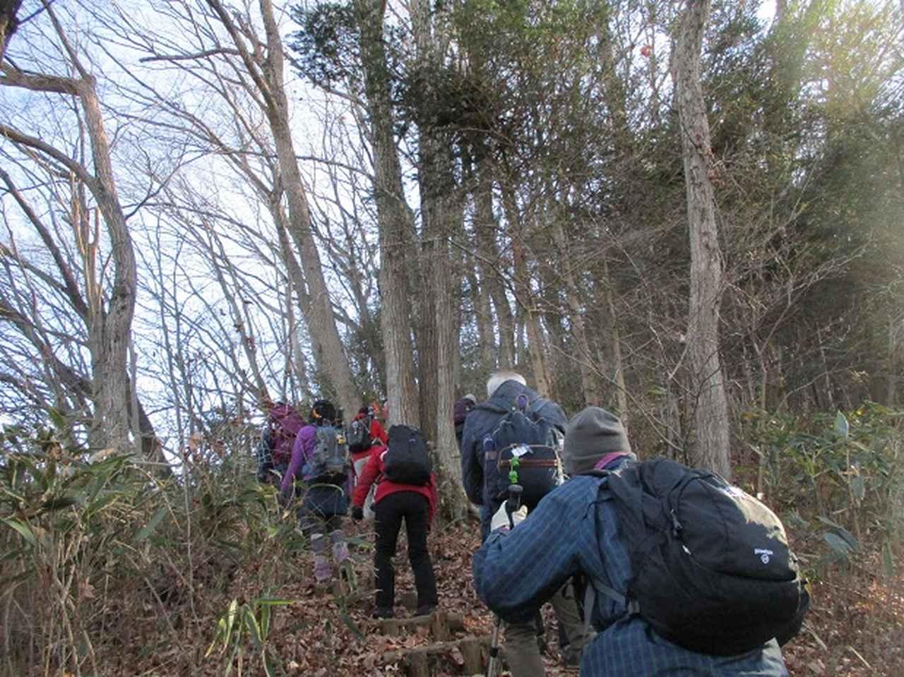 画像2: 11日に岡田ガイドのコースで、 丹沢南山 へいってきました♪