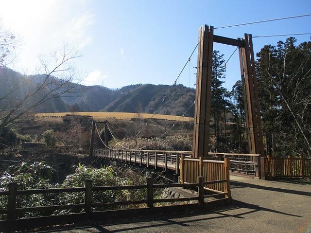 画像12: 11日に岡田ガイドのコースで、 丹沢南山 へいってきました♪