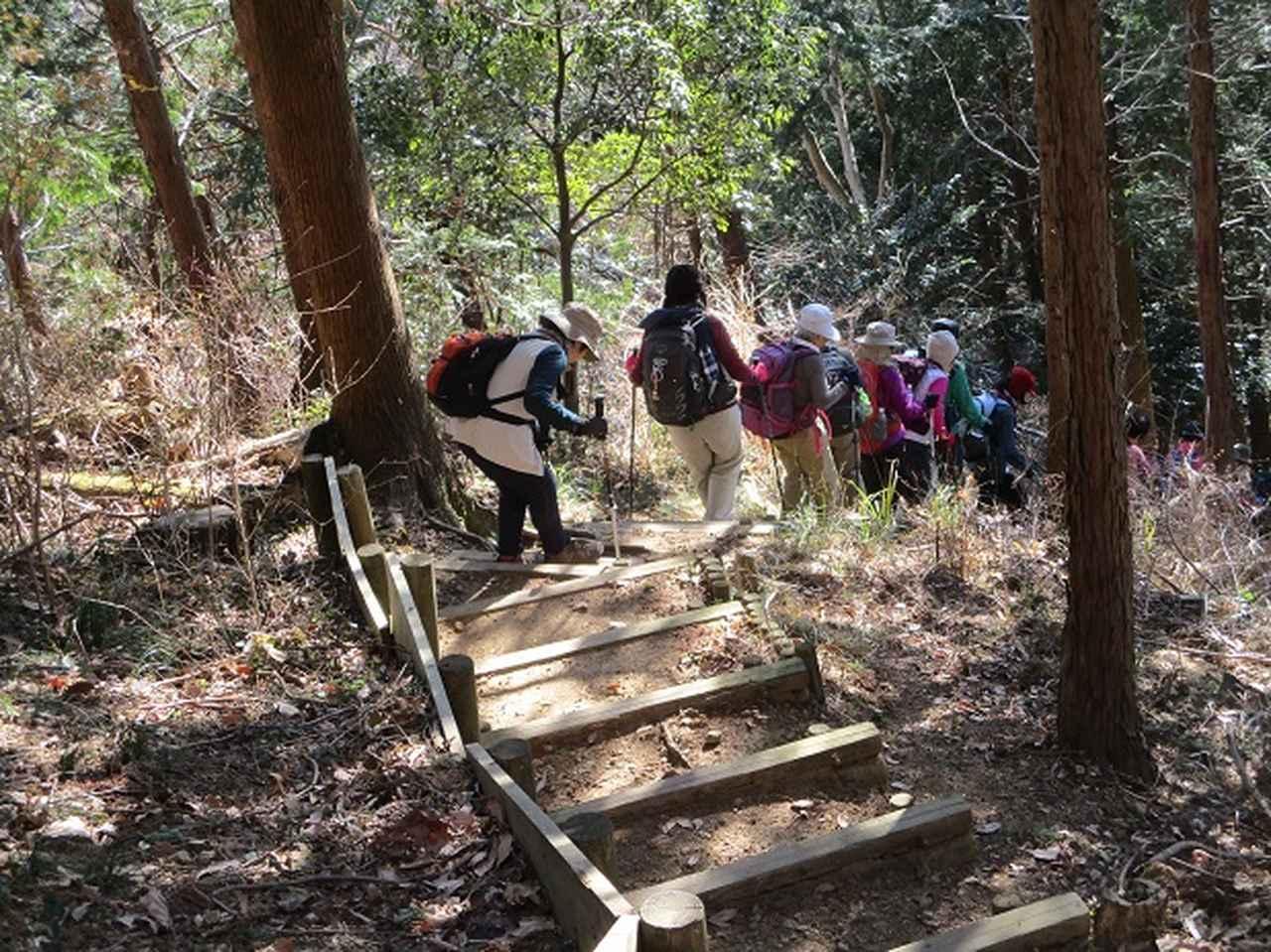 画像11: 11日に岡田ガイドのコースで、 丹沢南山 へいってきました♪