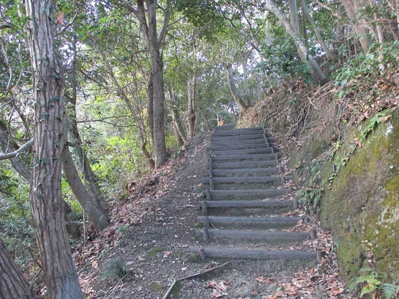 画像2: 1月の山旅会新年企画 「天神山と沖の島」 ツアーの下見にいってまいりました!