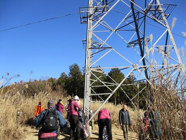 画像3: 11日に岡田ガイドのコースで、 丹沢南山 へいってきました♪