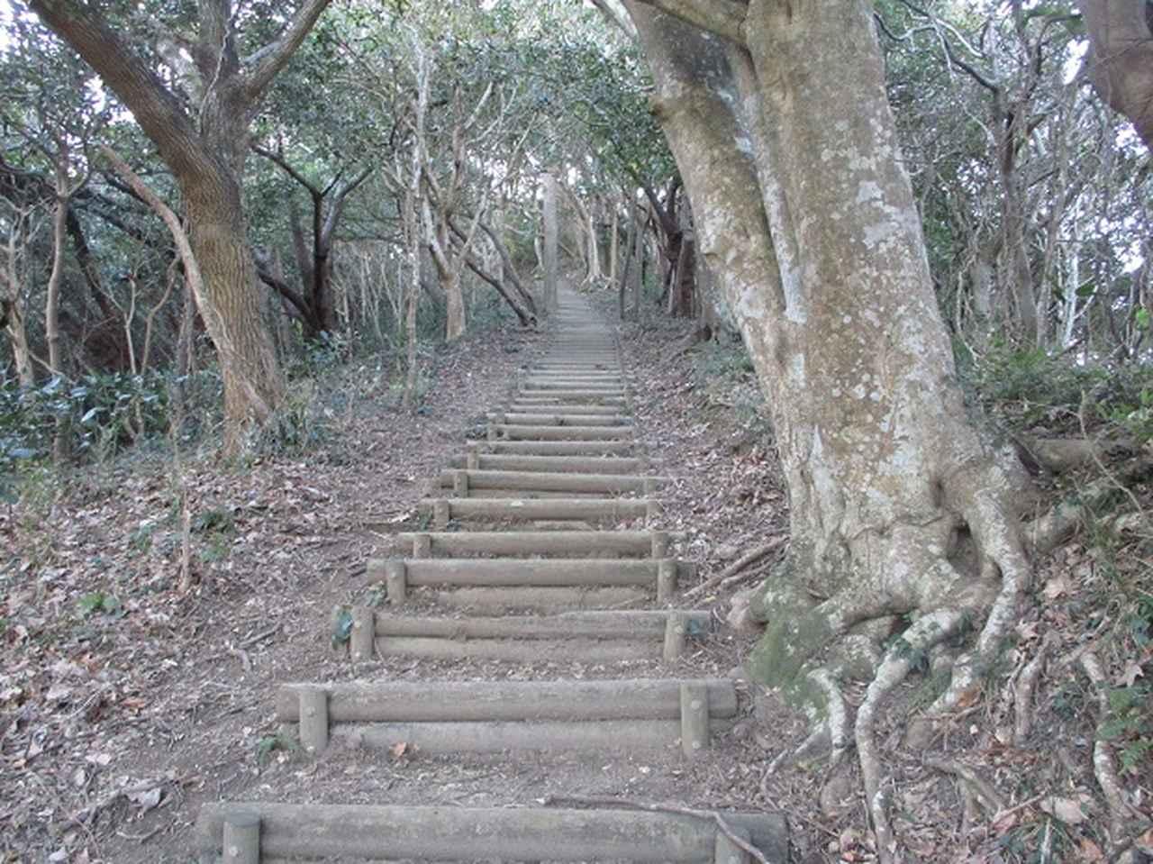 画像4: 1月の山旅会新年企画 「天神山と沖の島」 ツアーの下見にいってまいりました!