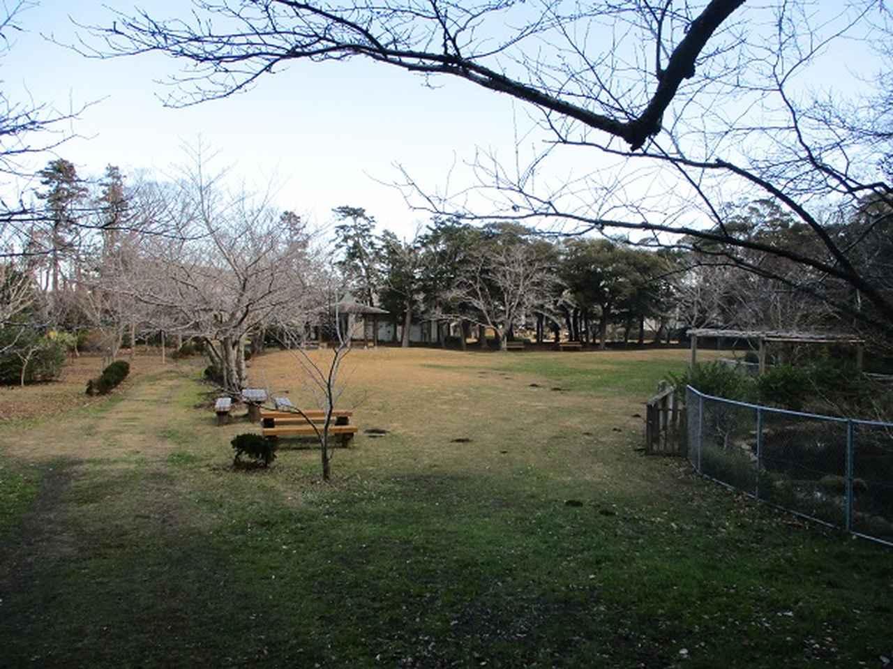 画像1: 1月の山旅会新年企画 「天神山と沖の島」 ツアーの下見にいってまいりました!