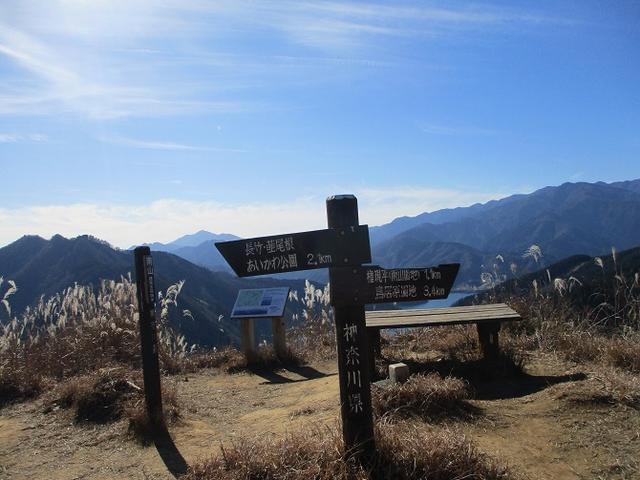 画像9: 11日に岡田ガイドのコースで、 丹沢南山 へいってきました♪