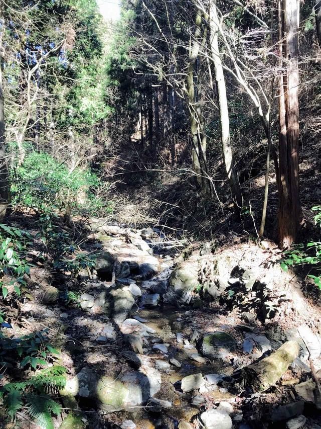 画像: 渓流も、夏とは違った雰囲気に。