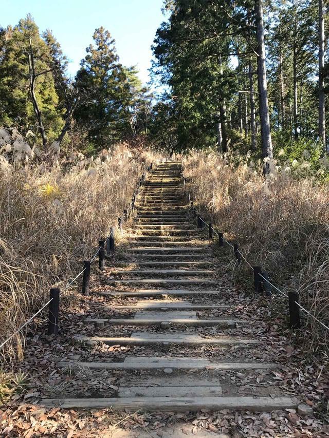 画像: 高尾山へ続く登り道